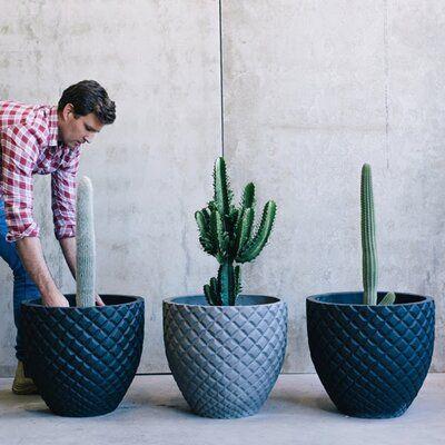 Orren Ellis Ronneby 1 Piece Stone Pot Planter Planter Pots Planters Pot