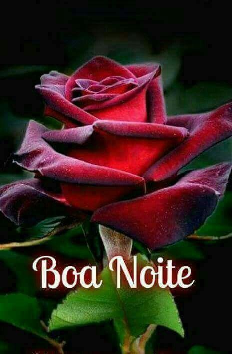 Pin De Fodor Livia Em Boa Noite Boa Tarde Com Flores Mensagem