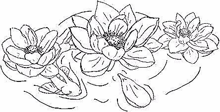 53 Trendy Tattoo Flower Outline Lotus In 2020 Flower Outline