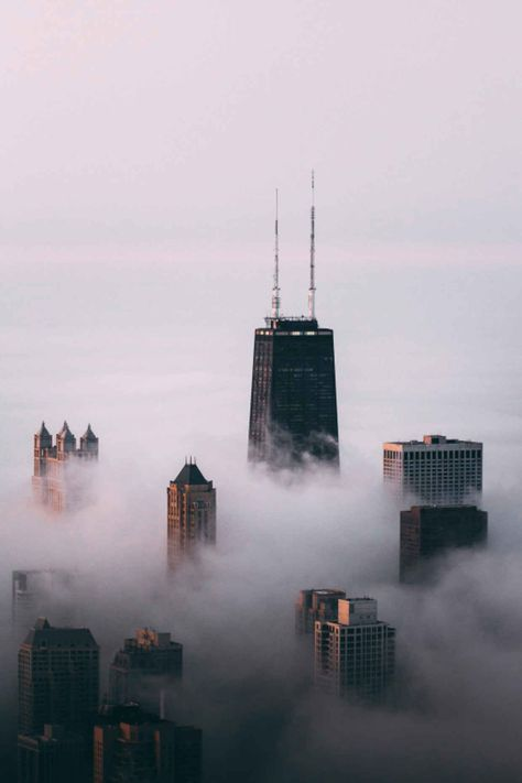 Chicago being swallowed by fog Photo by Michael Salisbury