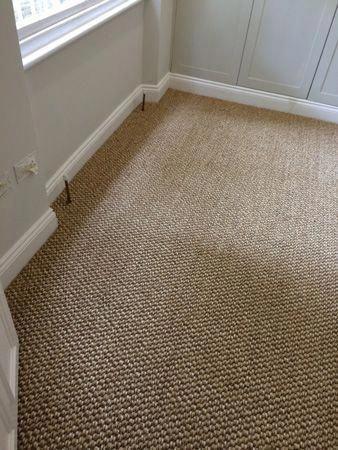 Carpet Runners Hallways Lowes Product Id 6621341731 Basement Carpet Stair Runner Carpet Discount Carpet