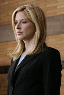 180 Favorite Ada S Of Law Order Svu Ideas Law And Order Svu Law And Order Svu