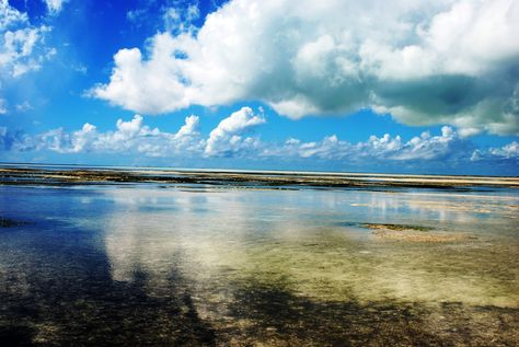 Low Tide, Jambiani, Zanzibar