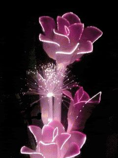 gif flowers and roses   Glitter Graphics » Flowers and trees » colour changing roses