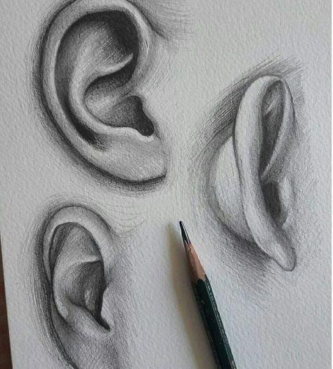 Ohren zeichnen...