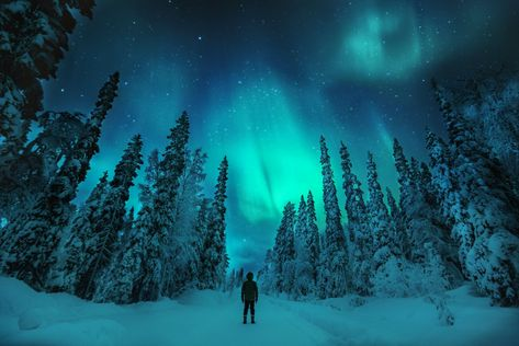 Best Time to See Northern Lights  in Finland 2021 - Rove.me