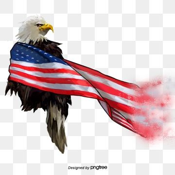 Gradual Change Of Hand Painted Elements Of American Flag White Headed Eagle National Bird National Flag National Bird Hand Painted Png Transparent Clipart Im Smoke Painting Eagle Art American Flag