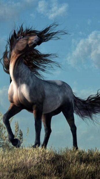 Обои скачок, конь, грива, жеребец, Мустанг лошадь, картинки на ... | 616x346