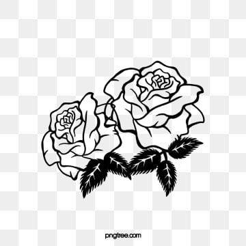 اثنين ابيض واسود الورود الورد المرسومة تقليم الزاوية اسود و ابيض Png وملف Psd للتحميل مجانا Black And White Roses White Roses Black And White