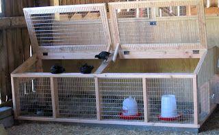brooder box for chicks under 6 weeks old