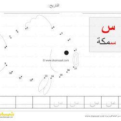 توصيل النقاط سمكة حرف السين Match Numbers مع كتابة الحروف للاطفال الصغار شمسات Learn Arabic Alphabet Learn Arabic Language Kids Learning