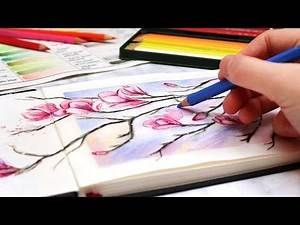 Successful Drawing With Colored Pencils Pencil Drawing Tutorials