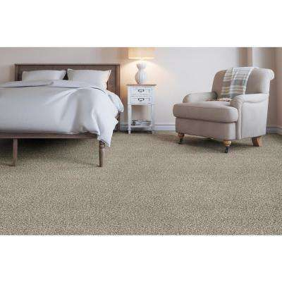 Home Decorators Collection Trendy Threads Ii Color Classy Texture 12 Ft Carpet H0104 197 1200 The Home Depot Indoor Carpet Living Room Carpet Home Depot Carpet