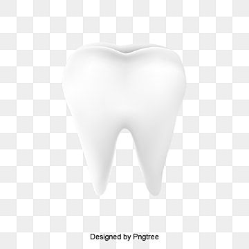 Vector Tooth Tooth Clipart Tooth White Png Transparent Clipart Image And Psd File For Free Download Tooth Icon Cartoon Styles Background Banner