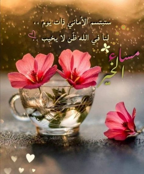 Pin By Yazan On Facial Massage In 2020 Good Morning Arabic Good Evening Stemless Wine Glass