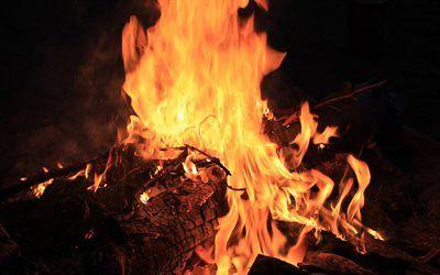 تحميل خلفيات شعلة كبيرة نار مساء اللهب حرق الشجرة حرق الفحم Besthqwallpapers Com Home Decor Decor Fireplace