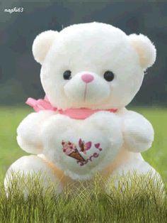 Animated Teddy Bear