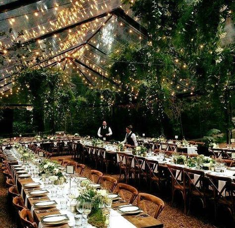 Bringing the outdoors, indoors with a clear marquee, hanging foliage chandeliers and festoon lighting. Perfect for temperamental climates.