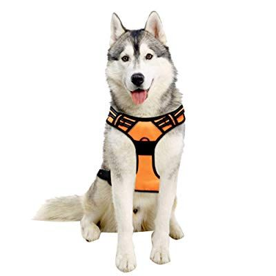 Save 60 With Promo Code 60lu9vgm Amazon Com Pet Harness Dog