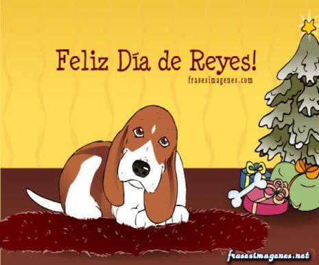 Feliz Dia De Reyes Fotos.Imagen De Perros Feliz Dia De Reyes Para Facebook Otras