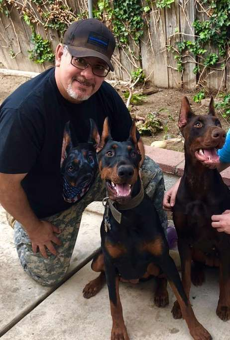 Orange County Sheriff S Department K9 Mercy Helps Keep Jails Free