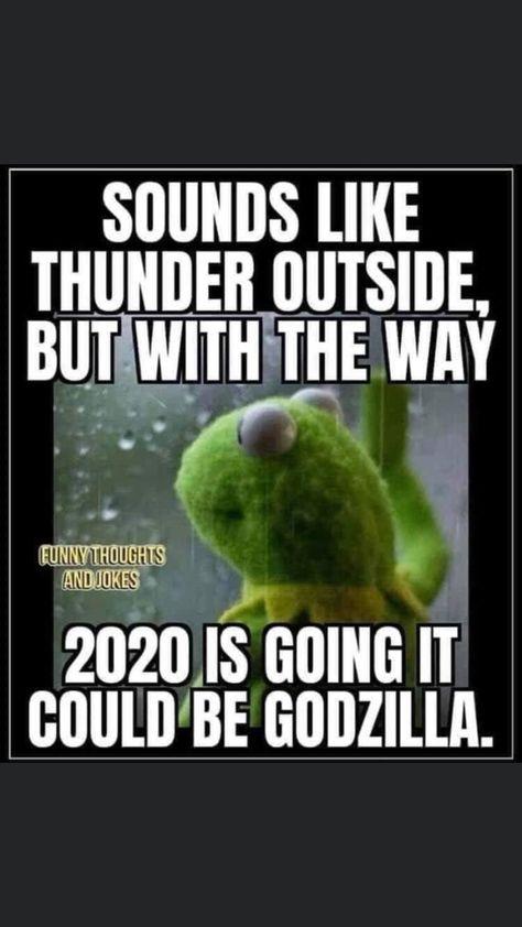 25 Best Memes About Douglas Douglas Memes