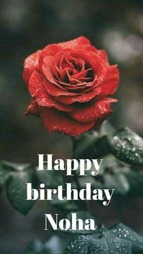 Pin By Heba Ebrahim On بطاقات عيد ميلاد Happy Birthday Flowers Rose