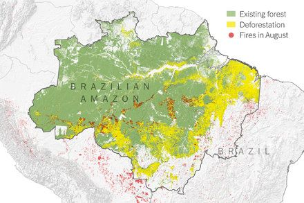 What Satellite Imagery Tells Us About The Amazon Rain Forest Fires