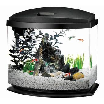 1 5 Gallon Aquarium Kit Aquarium Kit Aquarium Led Aquarium