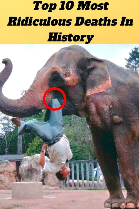 Top #10 #Most #Ridiculous #Deaths #In #History#.Gifs#WTF#Hilarious#Confession#Bizarre#OMG#Funny#Weird#Viral#Amazing