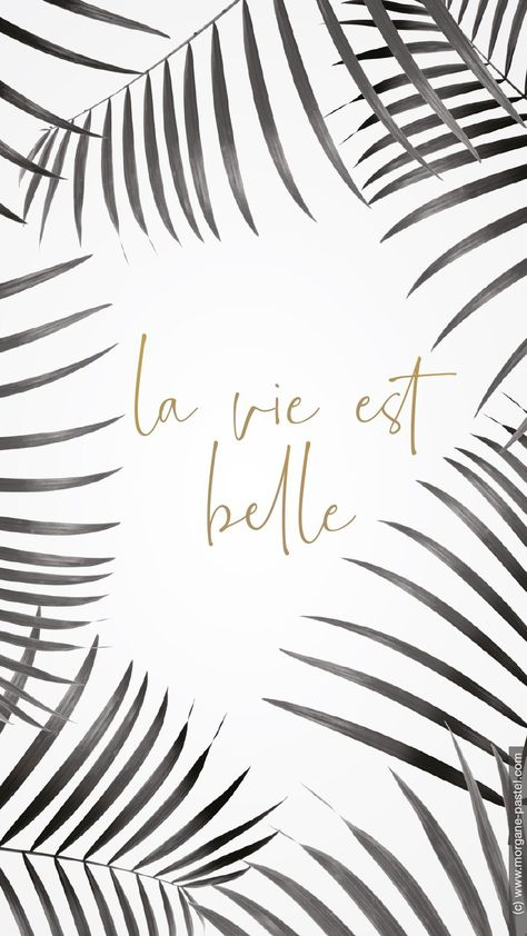 Fond D Ecran La Vie Est Belle Avril 2019 Fond D Ecran Telephone Ecran Et Fond D Ecran Citation