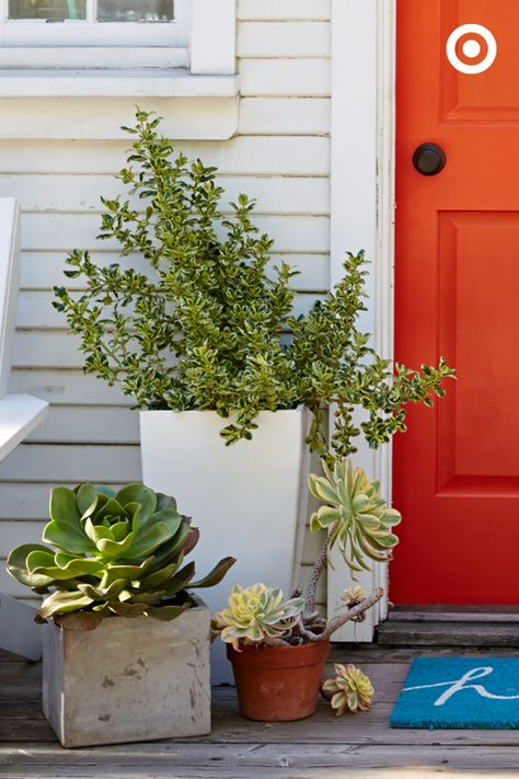 Why shouldn't your front door look as great as your backyard? Start with larger, symmetrical potted plants on each side, then add smaller pots and plants for a fun mix of shapes, textures and color. Don't forget the bright doormat—hello!
