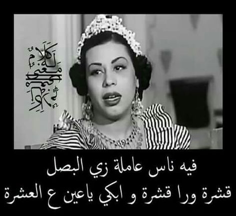 Arabichumor Fun Quotes Funny Arabic Funny Funny Words