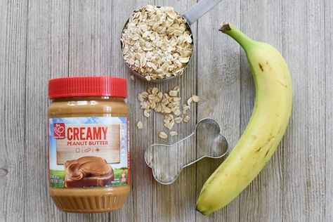 Oatmeal Peanut Butter Banana Dog Treats Recipe Dog Biscuit