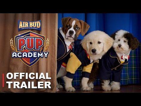 Pup Academy Official Trailer Hd Youtube Cartoon Tv Shows