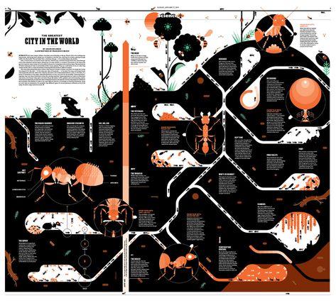 New York Times for Kids Infographics