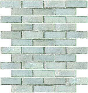 Susan Jablon Mosaics 2x2 Inch E