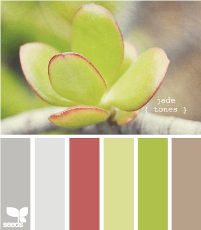 jade tones.  We really only have to look to nature for the perfect colour scheme. It's all there, the balance of colours is perfect. If it's a fish, a flower, a leaf, a feather. It's all there.