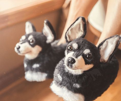 Introduces Plush Slippers Of Your Pet