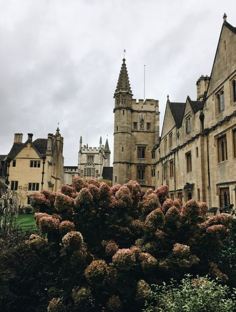 𝖛𝖊𝖓𝖚𝖘 𝖉𝖔𝖔𝖒 — jawnkeets: oxford is looking very autumnal 🍂 Outlander, Gates, Oxford College, University Of Oxford, University In England, College Aesthetic, A Discovery Of Witches, Oxford England, London England