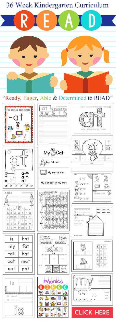 This new Kindergarten Reading Curriculum looks AMAZING!!  R.E.A.D. Curriculum…
