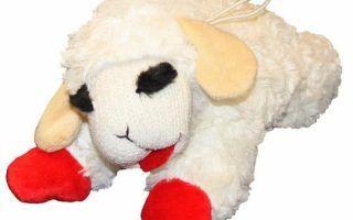 Multipet Lamb Chop Plush Dog Toy Regular Chewy Throughout Lamb