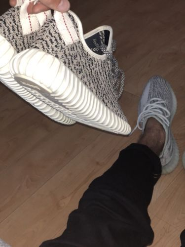 Adidas Men s Yeezy Boost 350 V1 Turtle