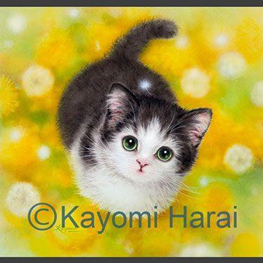 Kittens Cute Animals Kittens Cutest Cute Animals Animals