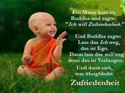 #Zitate #Lebensweisheiten #Zufriedenheit #Zitate