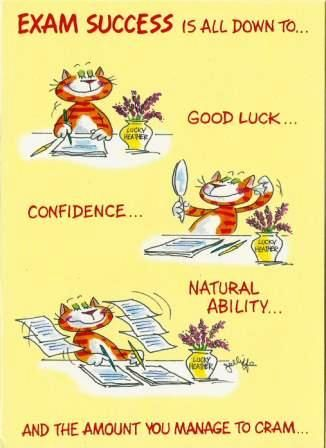 Funny Good Luck Messages For Exams : funny, messages, exams, Exams, Cards,, Wishes