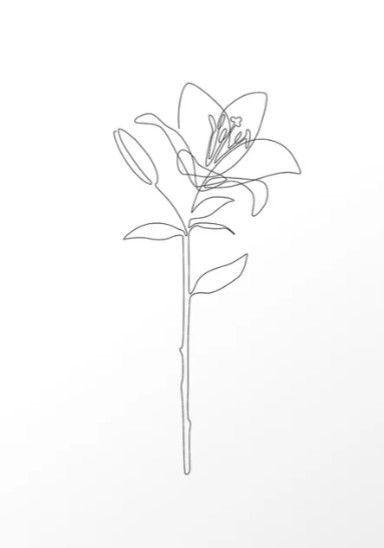 Pin By Sarah Kamarudin On Sketches