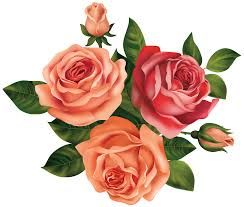 نتيجة بحث الصور عن ورد سكرابز Botanical Flowers Digital Flowers Rose