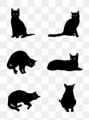 Halloween Poster Commercial Black Cat Animal Element Black Cat Animal Black Png And Vector With Transparent Background For Free Download Black Cat Illustration Cat Illustration Black Cat Art