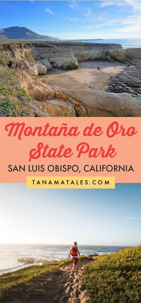 Things to do in Montaña de Oro State Park, Morro Bay (San Luis Obispo), California